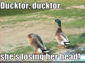 Ducktor, ducktor...  she's losing her head!