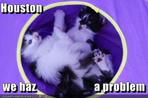 Houston     we haz                         a problem