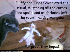 Fluffy and Tigger completed the ritual, muttering all the curses and spells, and as darkness left the room, the dog was gone.      For good, they hoped.