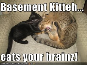 Basement Kitteh...  eats your brainz!