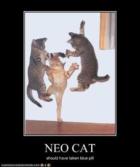 NEO CAT