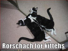Rorschach for kittehs