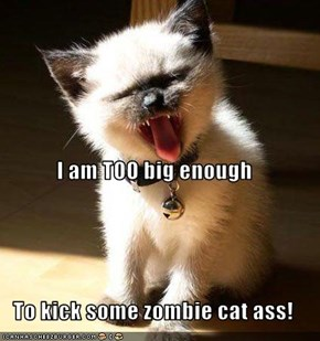 I am TOO big enough To kick some zombie cat ass!