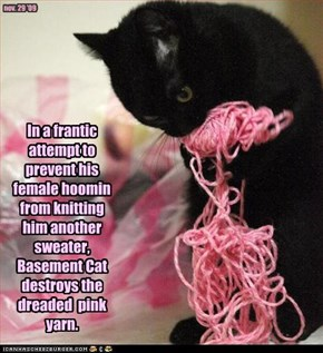 In a frantic attempt to prevent his female hoomin from knitting him another sweater, Basement Cat destroys the dreaded  pink yarn.