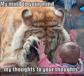My mind to your mind...  ...my thoughts to your thoughts
