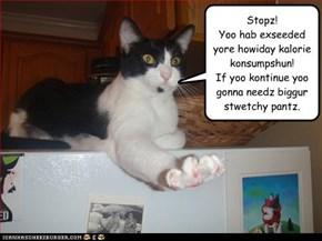 Stopz! Yoo hab exseeded yore howiday kalorie konsumpshun! If yoo kontinue yoo gonna needz biggur stwetchy pantz.