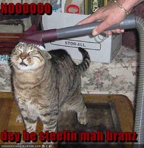 NOOOOOO  dey be steelin mah branz