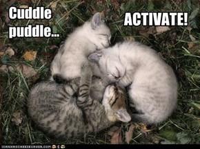 Cuddle puddle...