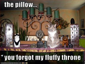 the pillow...     you forgot my fluffy throne
