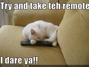 Try and take teh remote!  I dare ya!!