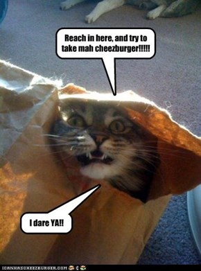 Reach in here, and try to take mah cheezburger!!!!!
