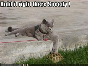 Hold it right there Speedy !