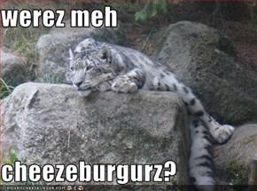 werez meh   cheezeburgurz?
