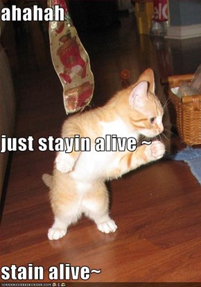 ahahah  just stayin alive ~ stain alive~