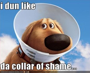 i dun like   da collar of shame...