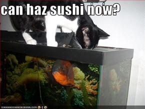 can haz sushi now?