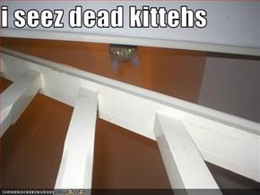 i seez dead kittehs