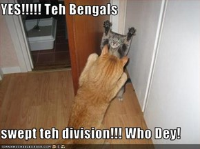 YES!!!!! Teh Bengals  swept teh division!!! Who Dey!