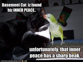 Basement Cat  iz found hiz INNER PEACE..
