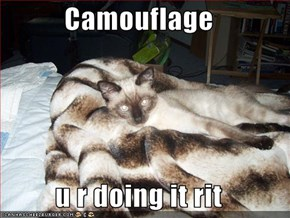 Camouflage  u r doing it rit