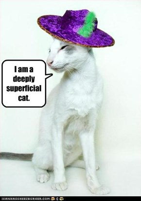 I am a deeply superficial cat.