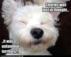Charles was lost in thought...
