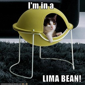 I'm in a  LIMA BEAN!