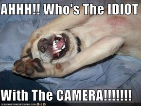 AHHH!! Who's The IDIOT  With The CAMERA!!!!!!!