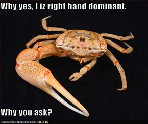 Why yes, I iz right hand dominant.  Why you ask?