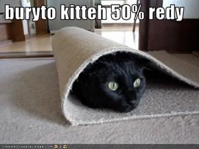 buryto kitteh 50% redy