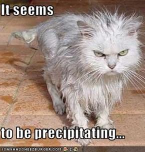 It seems  to be precipitating...