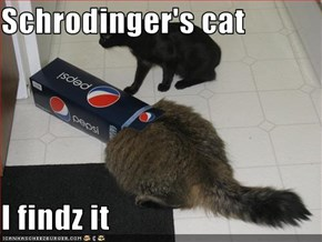 Schrodinger's cat  I findz it