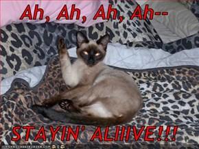 Ah, Ah, Ah, Ah--  STAYIN' ALIIIVE!!!