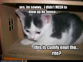 yes, im sowwy... i didn't MEEN to blow up de house...