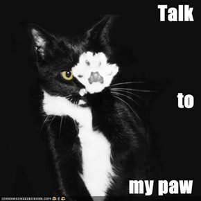 Talk to my paw