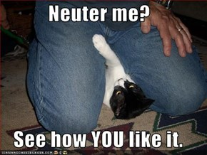 Neuter me?  See how YOU like it.