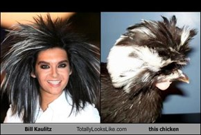 Bill Kaulitz Totally Looks Like this chicken