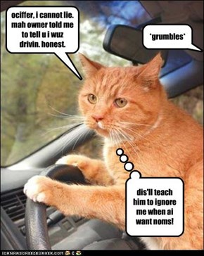 ociffer, i cannot lie. mah owner told me to tell u i wuz drivin. honest.