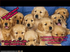 Tiffany's Big Family of Cheezyfreinds!