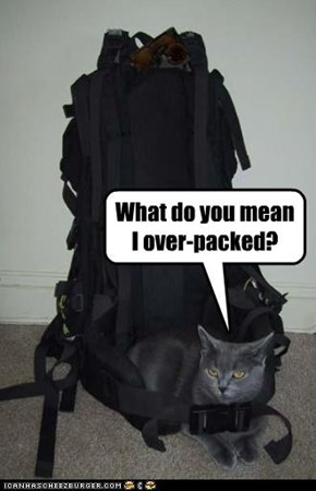 What do you mean  I over-packed?