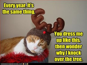 Every year, it's the same thing. You dress me up like this, then wonder why I knock over the tree.