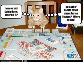 I wanna buy Catnip Farm.  Where is it?