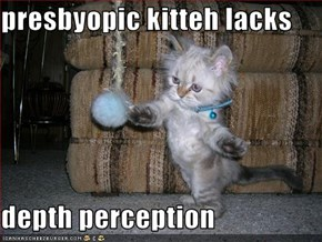 presbyopic kitteh lacks  depth perception