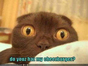 do youz haz my cheezburger?