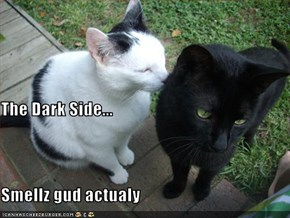 The Dark Side... Smellz gud actualy
