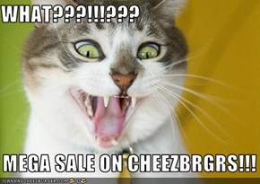 WHAT???!!!???     MEGA SALE ON CHEEZBRGRS!!!