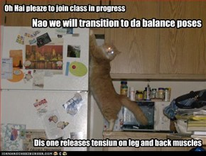 Nao we will transition to da balance poses