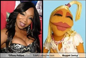 Tiffany Pollard Totally Looks Like Muppet Janice