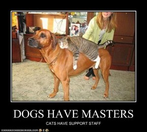 DOGS HAVE MASTERS
