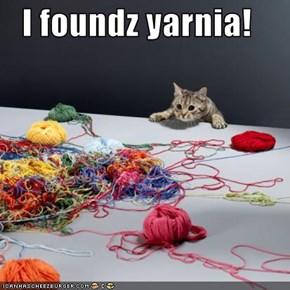 I foundz yarnia!